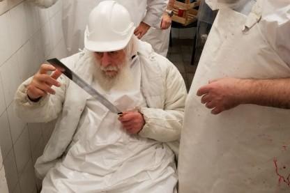 הרב שמואל לוין