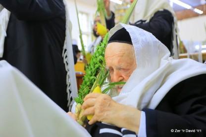 הרב חיים קנייבסקי, הושעונות